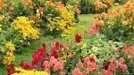 October Horticulture Report